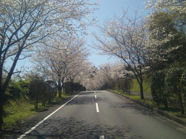 川辺路 2