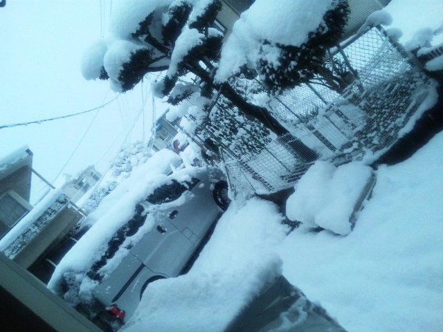 寒い幕開け(>_<)