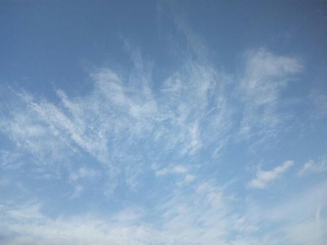 わたしは雲になりたい